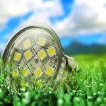 Die Umwelt-Vorteile von LED-Lampen