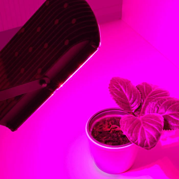 Pflanzenleuchte für hocheffiziente Photosynthese
